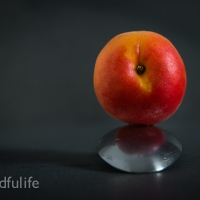 A Picture A Day : Apricot On Spoon
