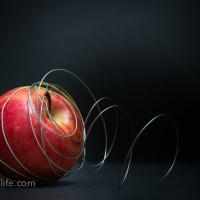 Food Photography : Apple With Wire