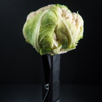 Food Photography : Cauliflower On Giant Clothespin