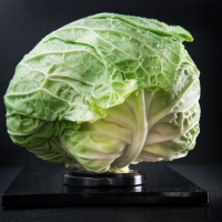 Food Photography : Green Cabbage With Lid