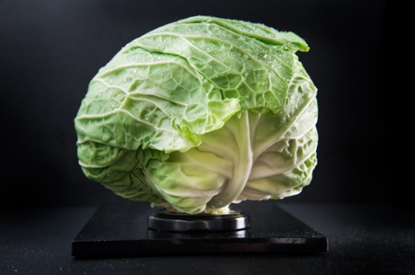 Green cabbage with lid.