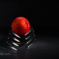 Food Photography : Strawberry Tree Fruit On Fork