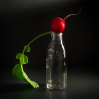 Food Photography : Radish On Glass Bottle
