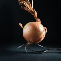 Food Photography : Dancing Onion