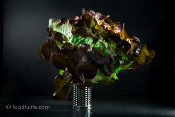 Red leaf lettuce on small grater