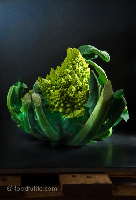 Romanesco cauliflower on dark background