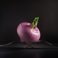 Pink Onion On Forks