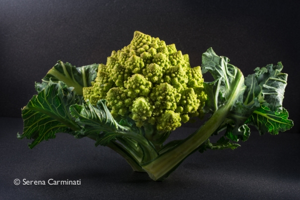 Small Romanesco cauliflower with leaves