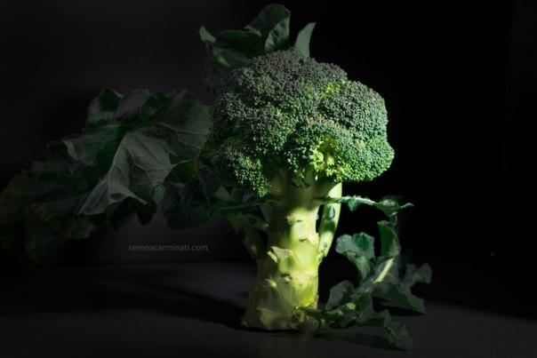 broccoli-on-dark-background