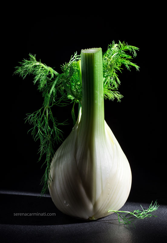 fennel-on-dark-background-wth-leaves