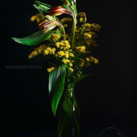 Red Alstroemeria And Solidago Flower Bouquet