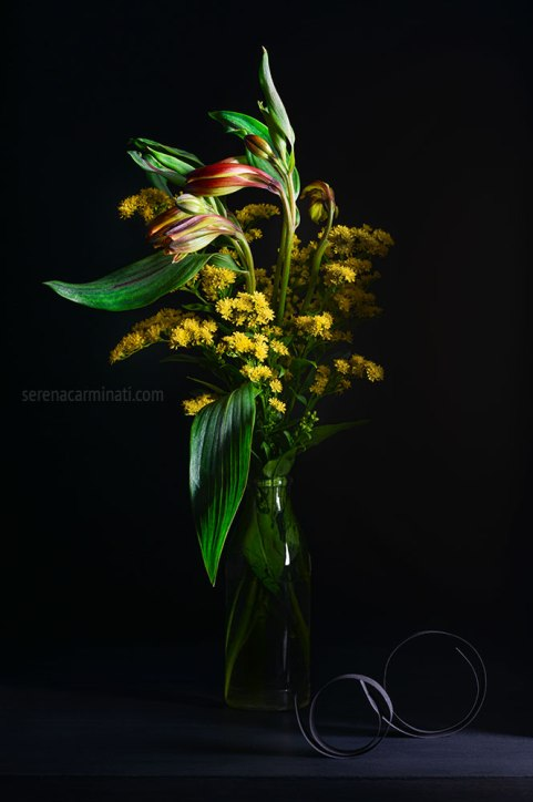 red and yellow alstroemeria with solidago flower , on black background.
