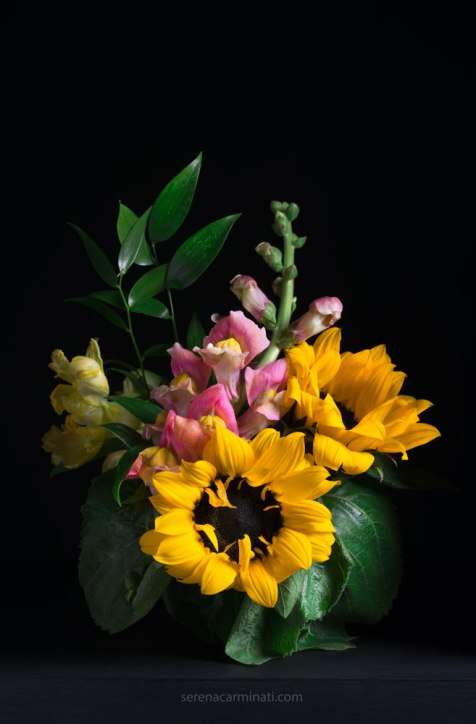 sunflowers with Snapdragon (Antirrhinum-majus) flower bouquet with low-key lighting