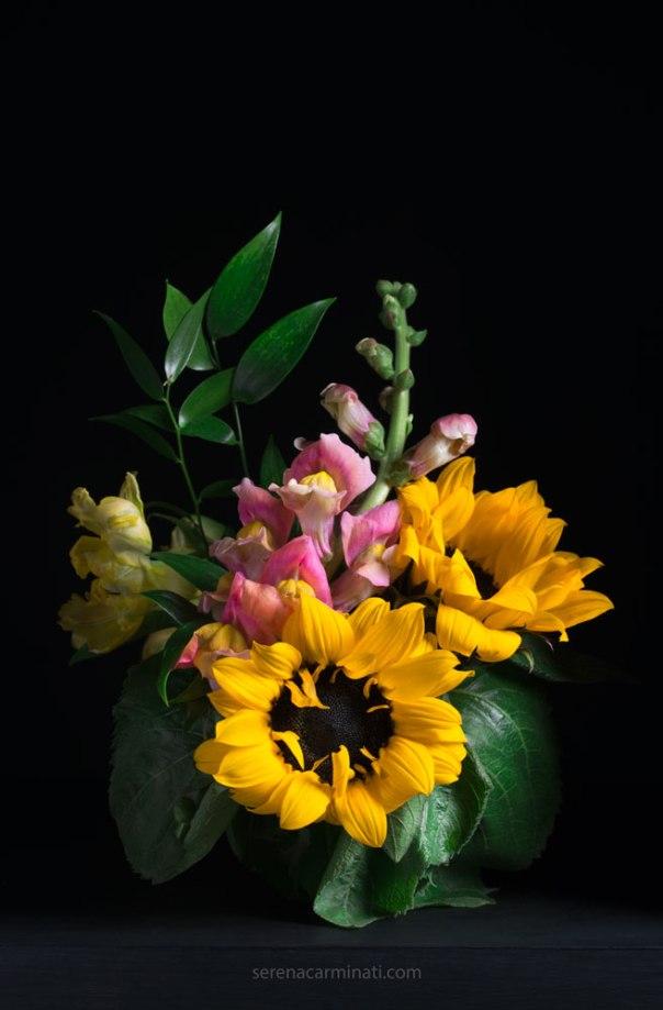 sunflowers with Snapdragon (Antirrhinum-majus) flower bouquet with low-key lighting