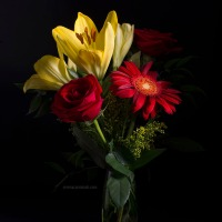 Bouquet with Gerbera, Lilliim and Red Roses.